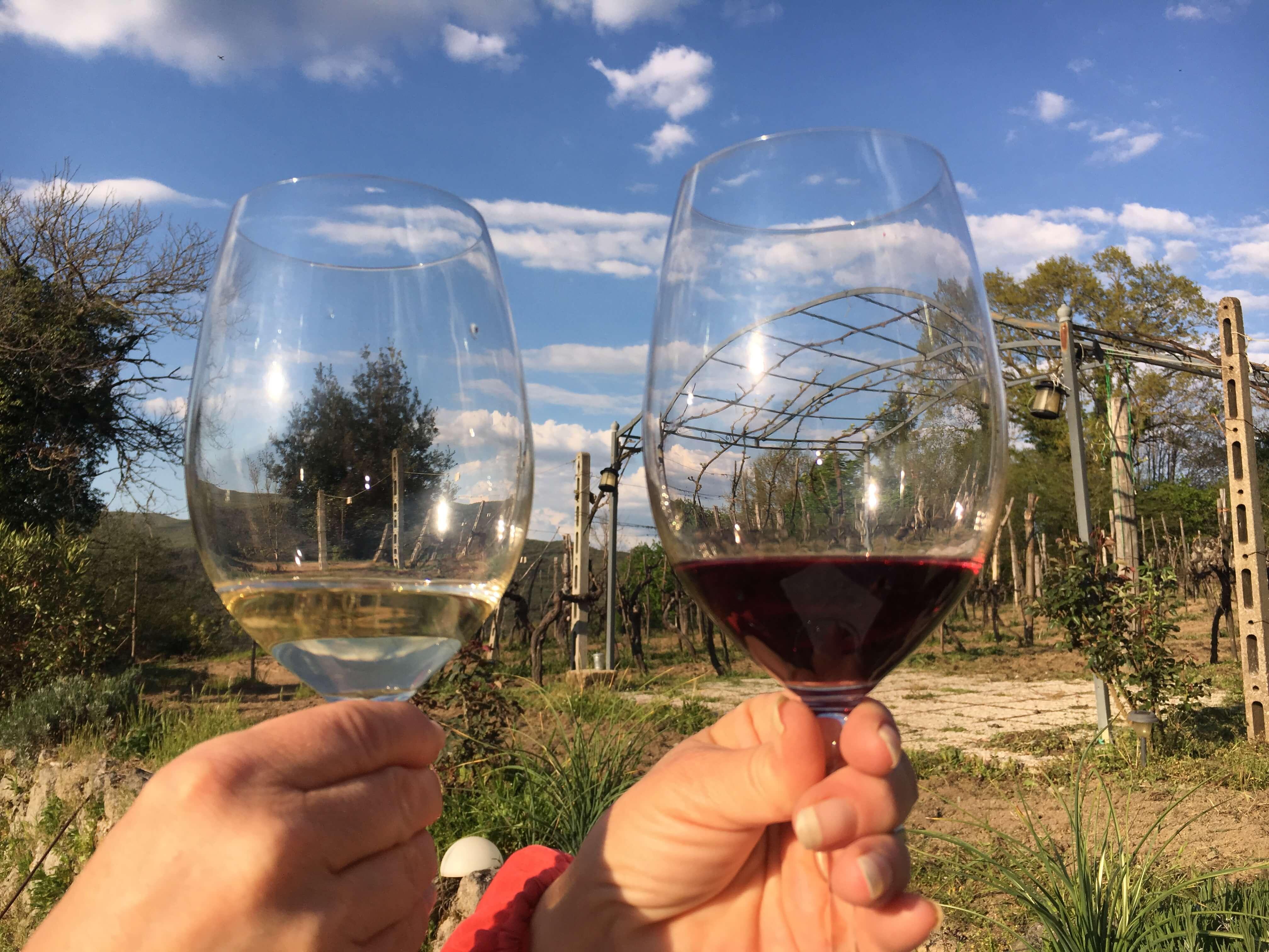 Anne Fredrikstad smaker på egen vin. Den røde og den hvite vinen. Vingården, Acquapendente, Italia.