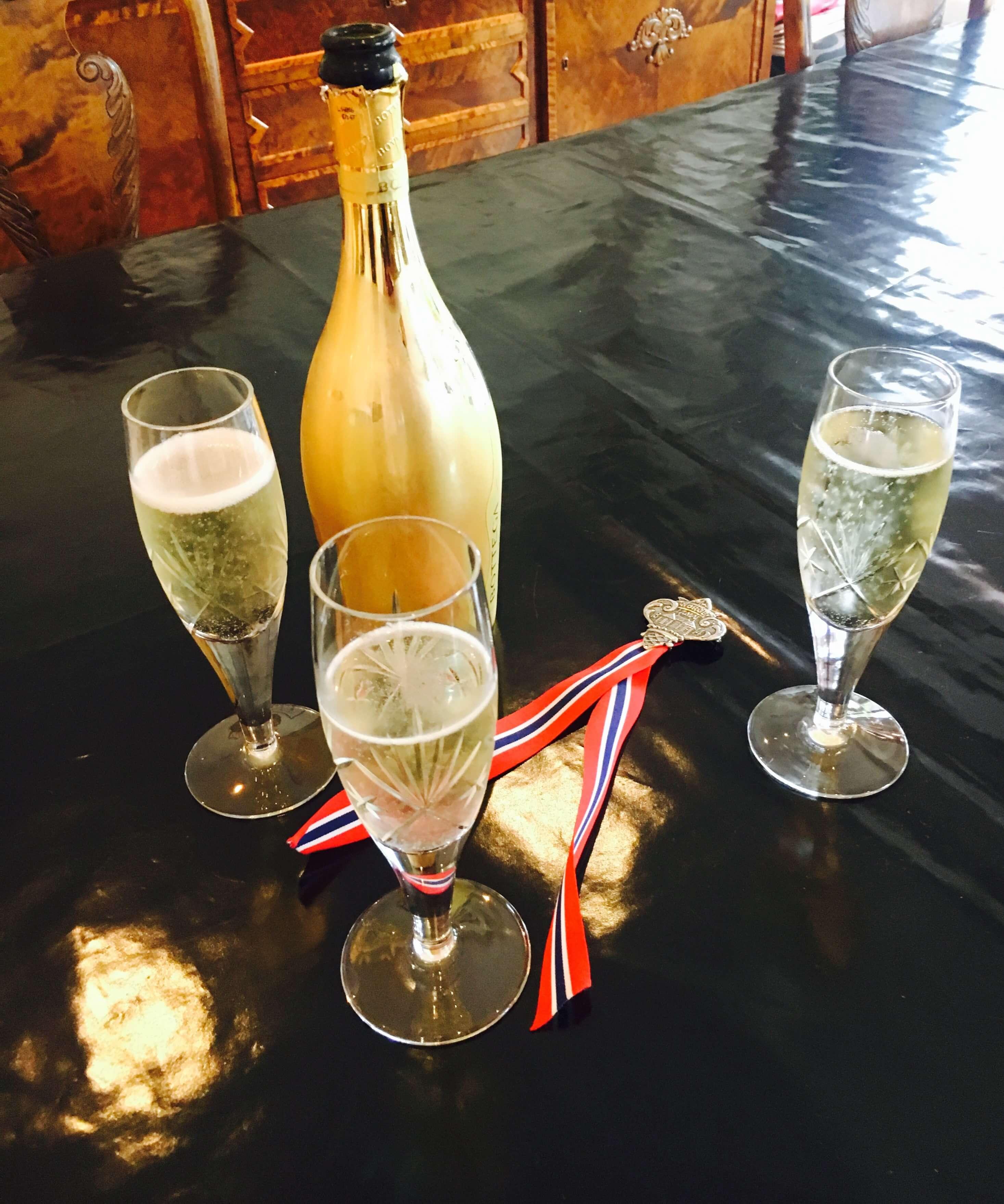 Trenger du en vinmeny til 17. mai? Her har jeg tips til viner du kan kjøpe inn til nasjonaldagen! Den inneholder musserende, hvitvin, rødvin og alkoholfritt. Ønsker deg en flott feiring! Hurra for 17. mai!