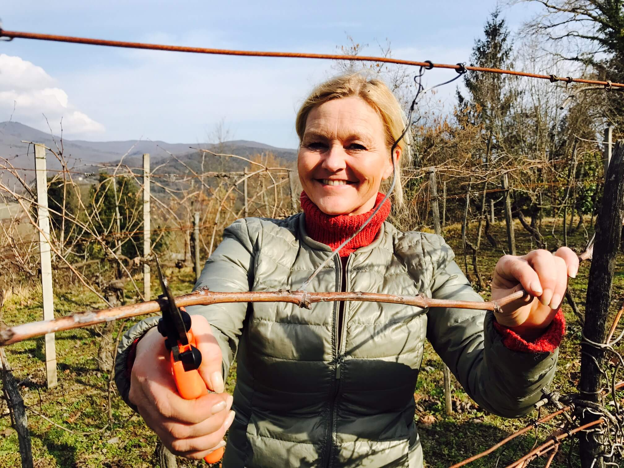 The joy of pruning – the 2017 wine season has started