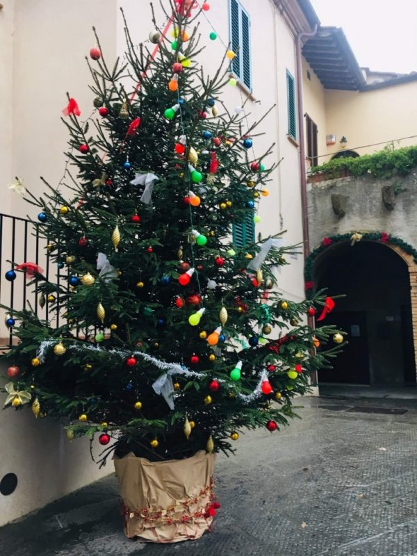 To røde og rimelige italienske viner til jul