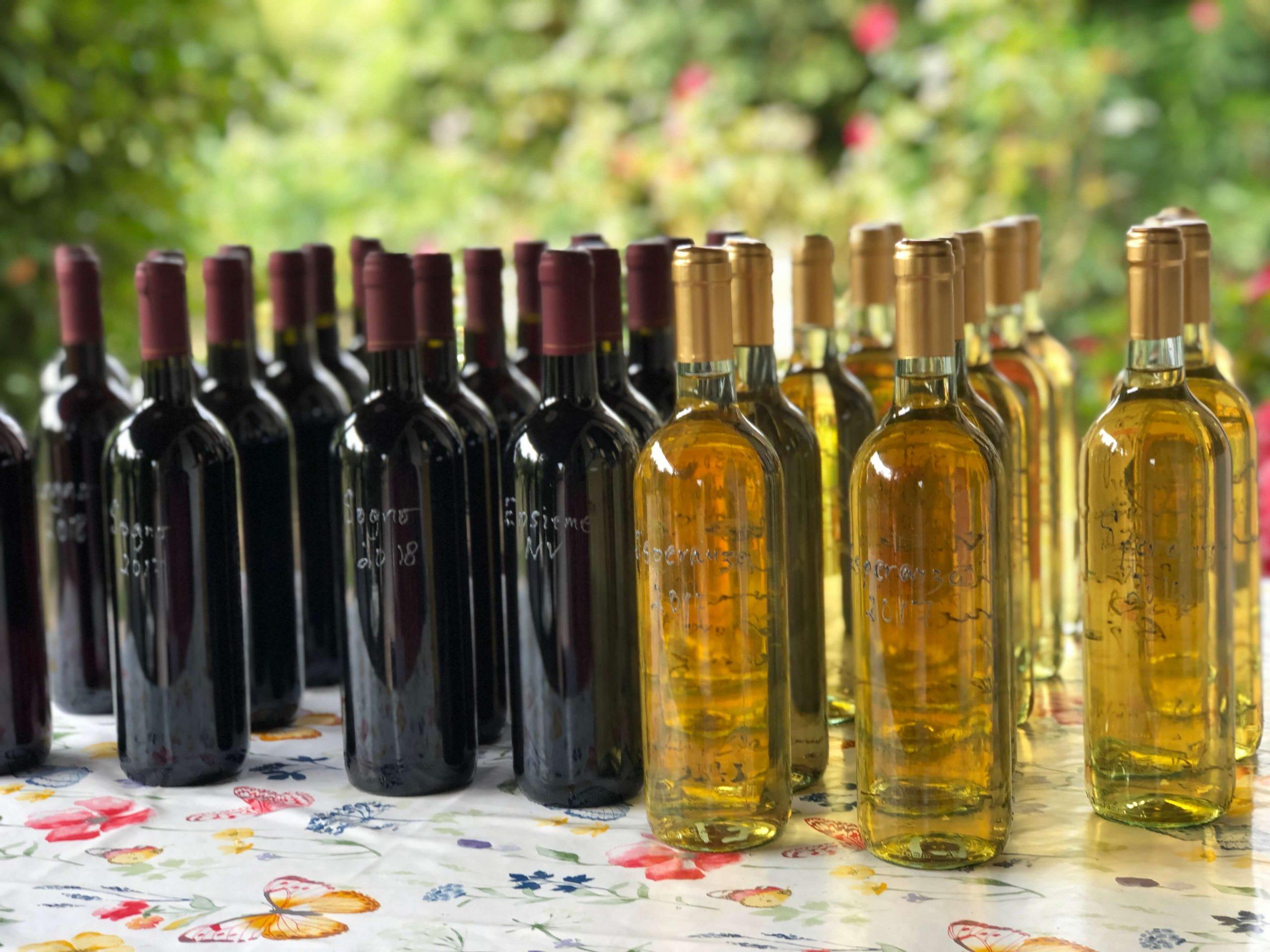 Navn på vinene – om å ta en beslutning