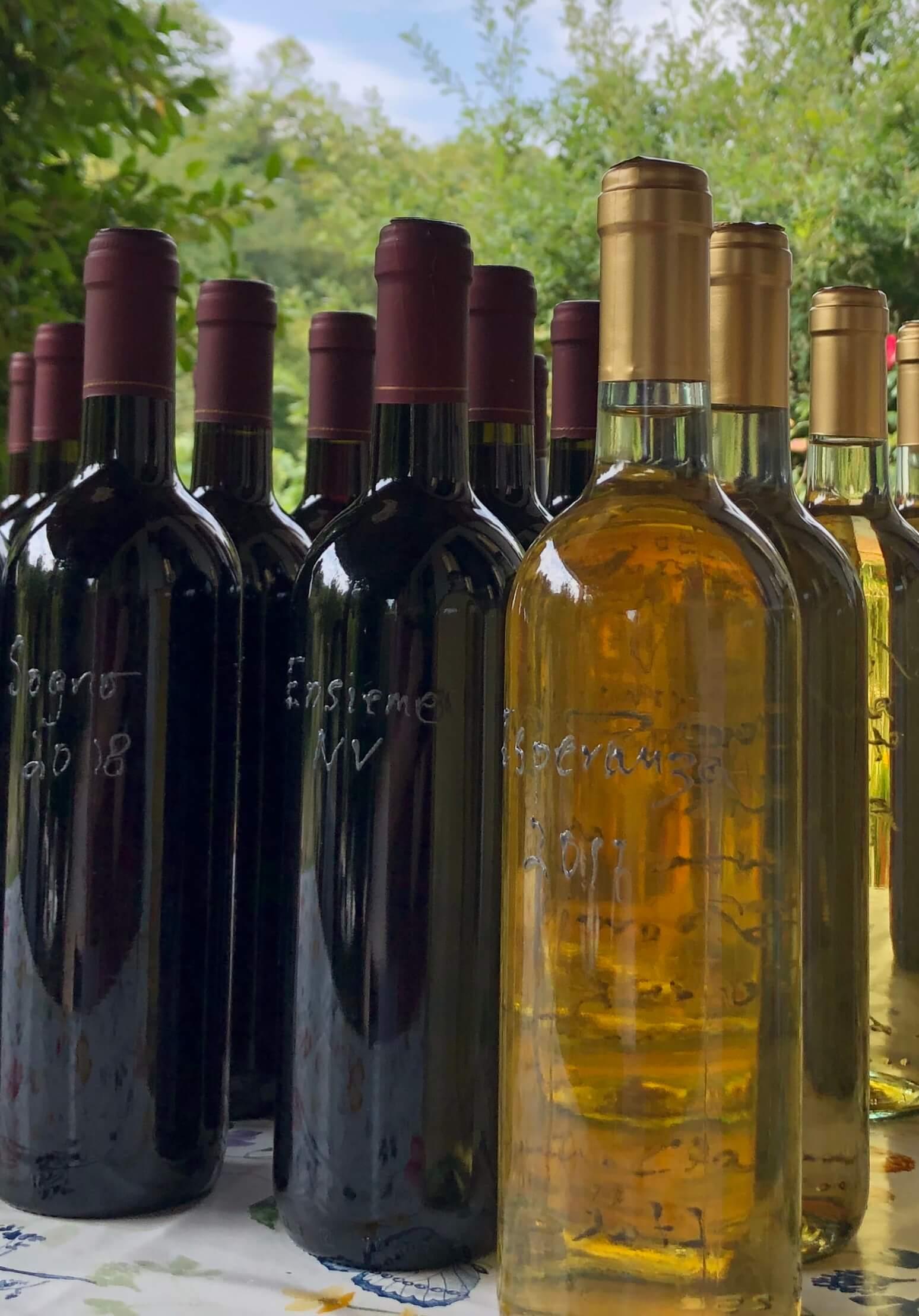 Hvor lenge skal man egentlig vente med å ta en beslutning? I påvente av at det rette navnet skulle dukke opp, har vinene våre kun hett vino rosso eller bianco. Men nå har jeg spurt meg til råds, og i den kreative prosessen har jeg endelig satt navn på vinene våre. Nå gjenstår kun navn på gården. Har du et forslag?