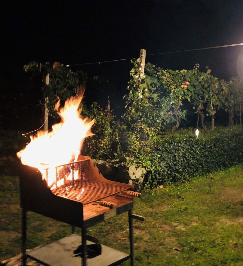 Det går mot høysesong for grilling. Lurer du på hva du skal drikke til? Her kommer noen forslag til røde, hvite og rosa viner til grillmat, og noen grilltips.