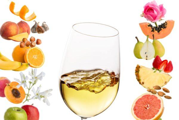 Aromatiske hvitviner med aroma av blomst. Om du er en av dem som elsker å lukte på roser, er nok dette noe for deg. Eller om du vil bli en bedre vinsmaker. Her er 8 vintips.