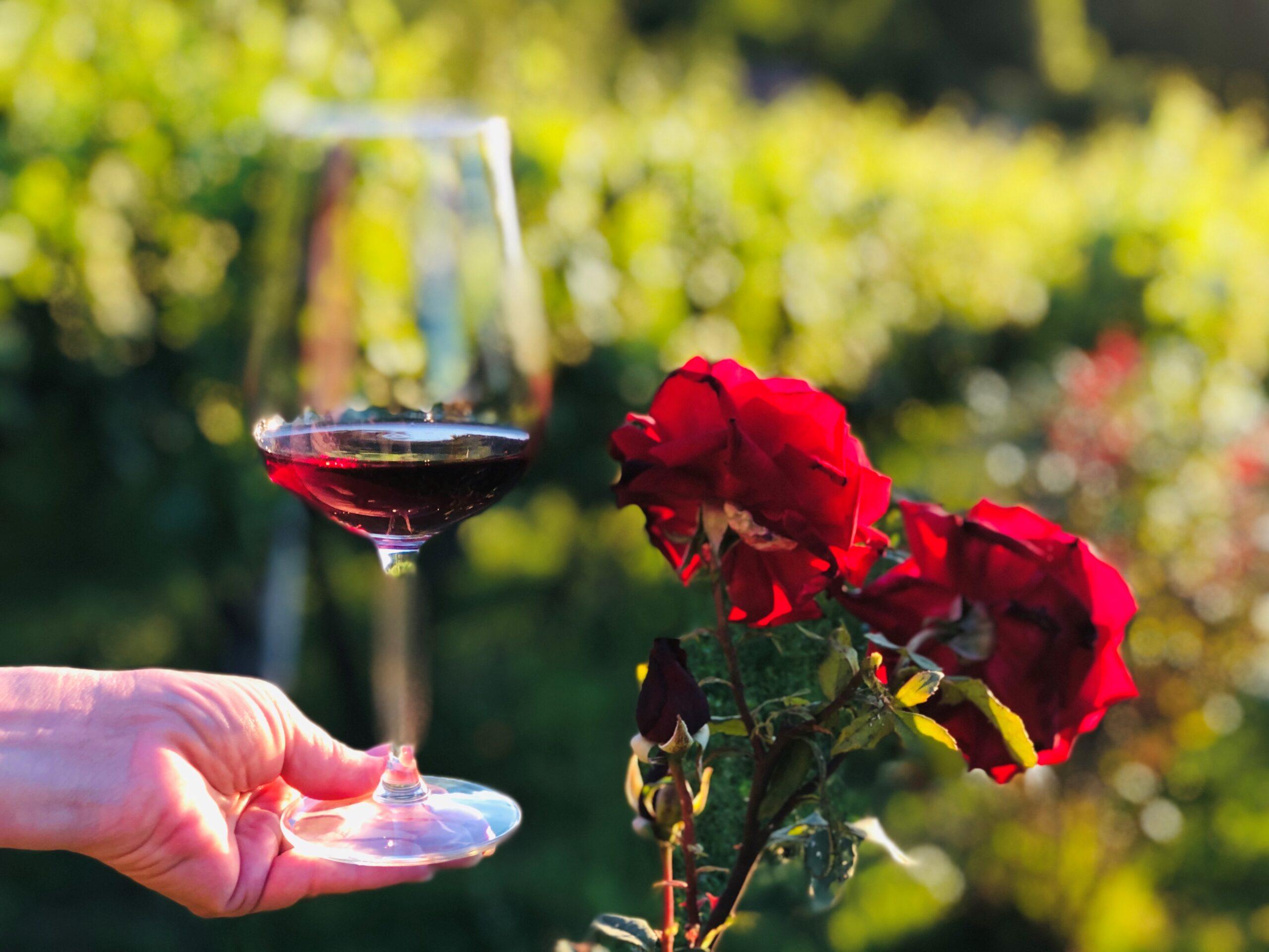 Drømmen om tur til Italia i 2021 – og fem italienske rødviner