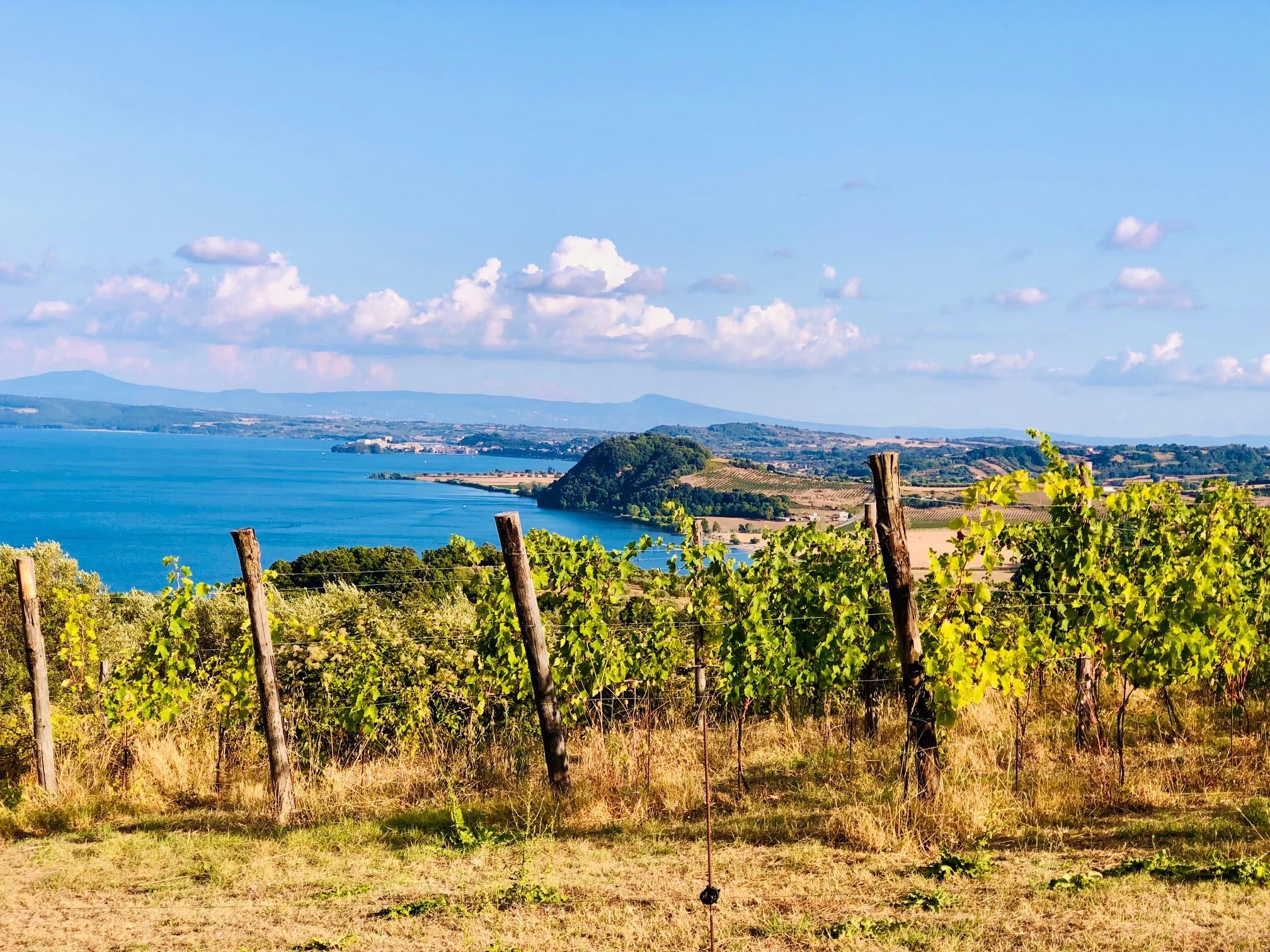 Vulkanske viner fra Bolsena – Andrea Occhipinti